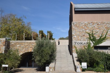 2016 05 South Africa wine estates 027 TOKARA is a picture perfect destination
