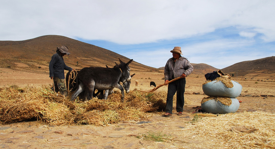 Normal course of life in Bolivia