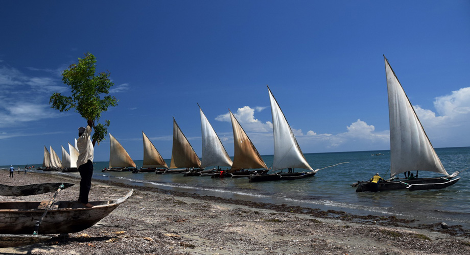 Dhows at the Tanzanian coast